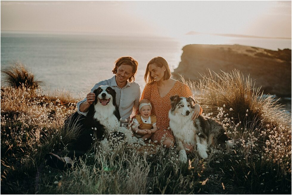 Kilcunda clifftop sunset shoot, Family portrait with dogs Kilcunda